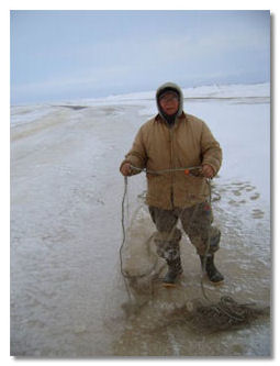 Man using set net for harvesting fish through ice