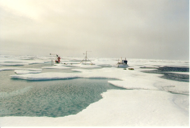 Arctic landscape with people and instruments